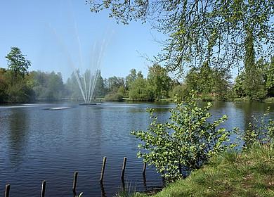 Wasserfontäne im Ellernteich Rastede